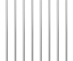Prison grid vector