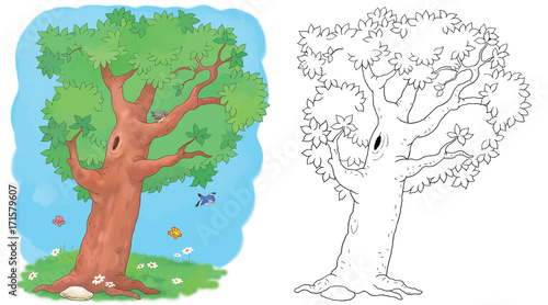 Four seasons. A summer tree. Coloring page. Illustration for