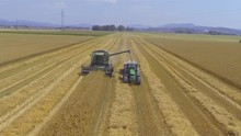 AERIAL: Combine Harvester Loading Wheat Grains In A Tractor