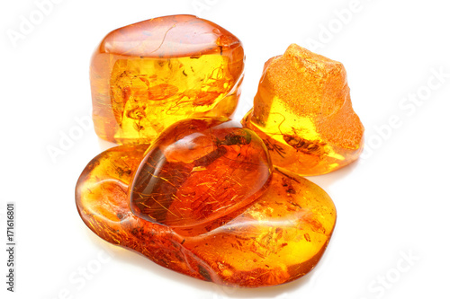 Fotografija four pieces of amber with different inclusions,  beetle,  fly,  mosquito,  ant,  larva