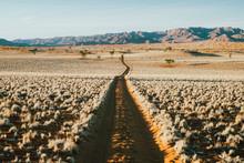 Long Empty Dirt Track In A Scenic Desert Landscape