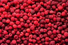 Just Picked Raspberries Background
