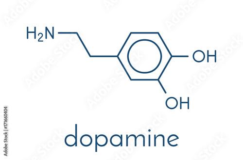 Dopamine neurotransmitter molecule  Also used as drug  Skeletal