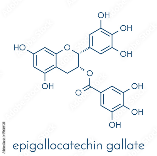 Photo Epigallocatechin gallate (EGCG) green tea polyphenol molecule
