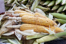 Maize Is Backed And Selling In...