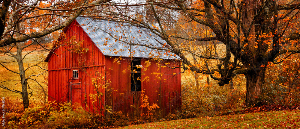 Autumn landscape with little red barn. Colorful orange and yellow fall leaves. Banner format
