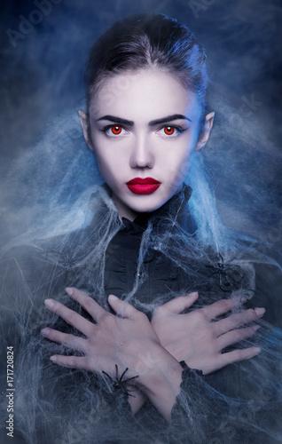 Fotografie, Obraz  Fantasy Halloween Vampire woman portrait