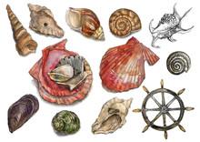 Watercolor Marine Set