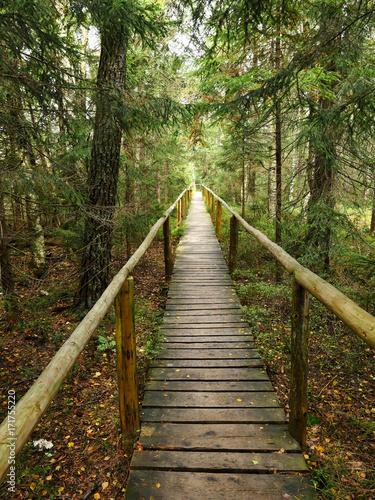 Torfowisko wysokie w barwach jesieni wraz z kładkami dla zwiedzających - 171755220