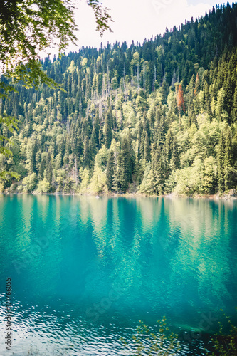 Photo sur Aluminium Gris traffic Blue lake in mountain and forest. Sunny day in nature