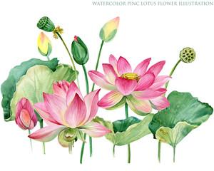 Plakat pink lotus border. watercolor botanical illustration.