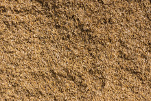 Mysore, India - October 27, 2013: In Ranganathapur, Closeup Of A Brown Heap Of Rice Chaff At An Industrial Rice Miller. The Husk Is Mechanically Peeled From The Rice Kernel.