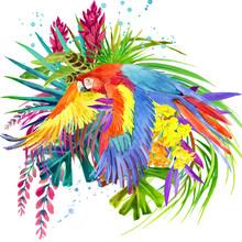 Parrot Bird Watercolor Illustration. Tropical Flower Background. Paradise Nature. T-shirt Design