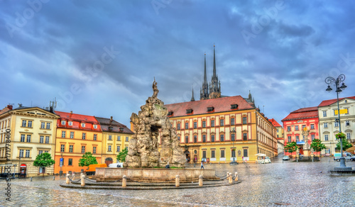 Parnas Fountain on Zerny trh square in the old town of Brno, Czech Republic Wallpaper Mural