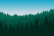 Vector Illustration Of Coniferous Forest With Green Trees In Several Layers Under A Blue Sky