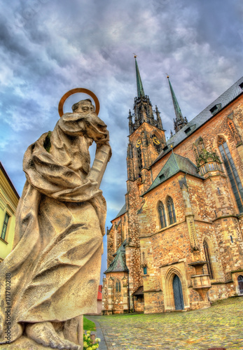 In de dag Madrid Statue at the Cathedral of Saints Peter and Paul in Brno, Czech Republic
