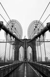 Brooklyn bridge of New York City, USA - 171785451