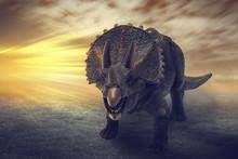 Dinosaurs  - Triceratops Dinos...