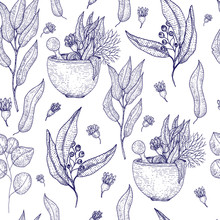 Medical Herbs Seamless Pattern With Sketch Engraved Spices And Herbs. Plant And Herbal Design For Wallpapers, Site Background, Promotion