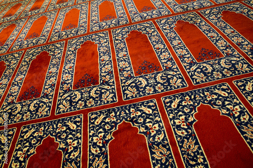 Canvas Prints Cat Red Carpet in a Mosque