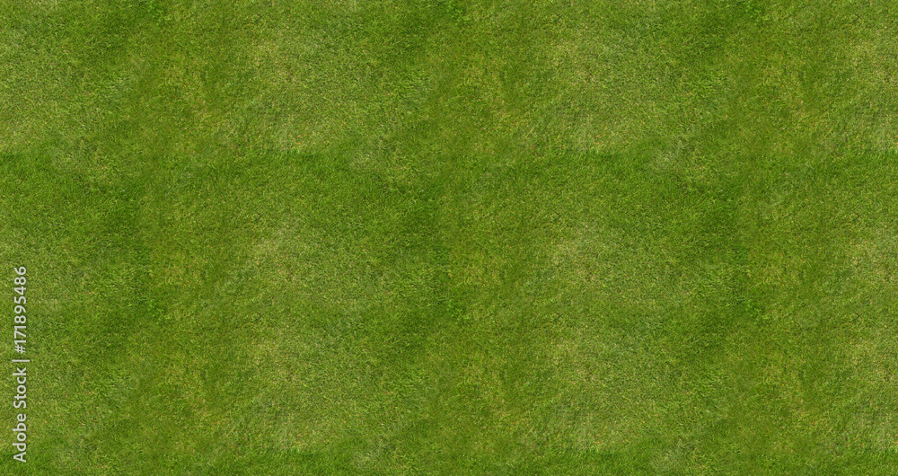 Fototapety, obrazy: Soccer football field grass background