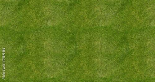 Fotografie, Obraz  Soccer football field grass background