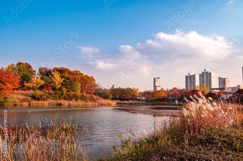 South Korea, Seoul Olympic Park Autumn landscape of lake.