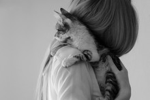 Woman Holding A Small Kitten In Her Arms