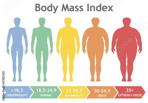 Obraz Body mass index vector illustration from underweight to extremely obese. Man silhouettes with different obesity degrees. Male body with different weight. - fototapety do salonu