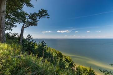 Fototapeta Morze Sandy beach and cliffs on Baltic sea coast, Poland, Wolin island
