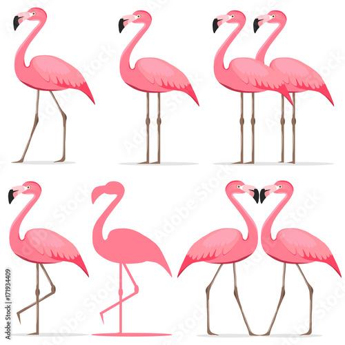 Canvas Prints Flamingo, a set of pink flamingos.