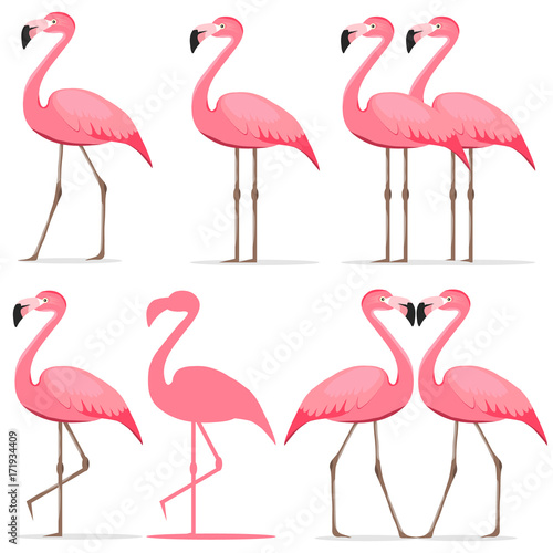 Canvas Prints Flamingo Bird Flamingo, a set of pink flamingos.