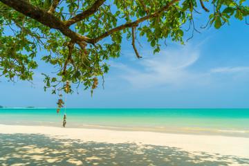 the Caribbean islands
