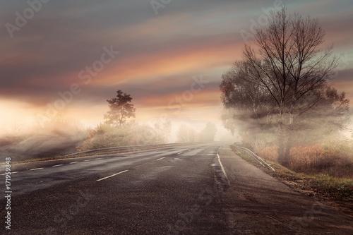 Tuinposter Zalm Idyllic and colorful view of the foggy autumn road