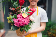 Handsome Male Florist Is Stand...