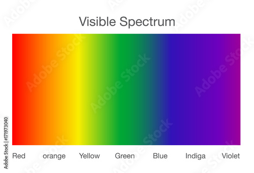 Fotomural  Visible spectrum of light. Illustration about Human vision.