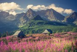Fototapeta Kwiaty - Tatra mountains, Poland landscape, colorful flowers and cottages in Gasienicowa valley (Hala Gasienicowa), summer
