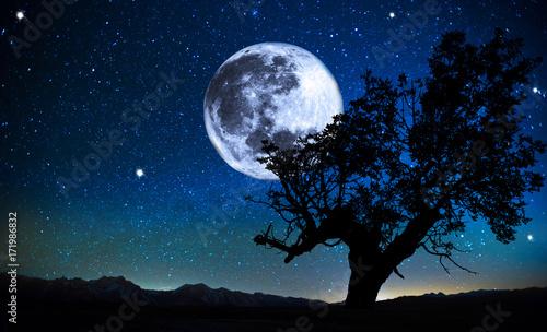 Obraz paisaje nocturno - fototapety do salonu