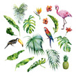 canvas print picture - Watercolor illustration of tropical leaves,flamingo bird and pineapple. Toucan and scarlet macaw parrot.Strelitzia reginae flower. Hand painted. Banner with tropic summertime motif. Palm leaves.