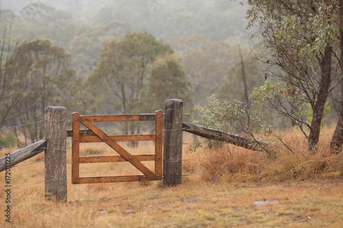 farm gate in the mist