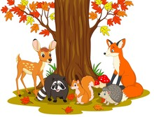 Cartoon Wild Creatures In The ...