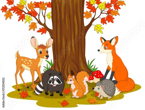 Obraz na plátně  Cartoon wild creatures in the forest