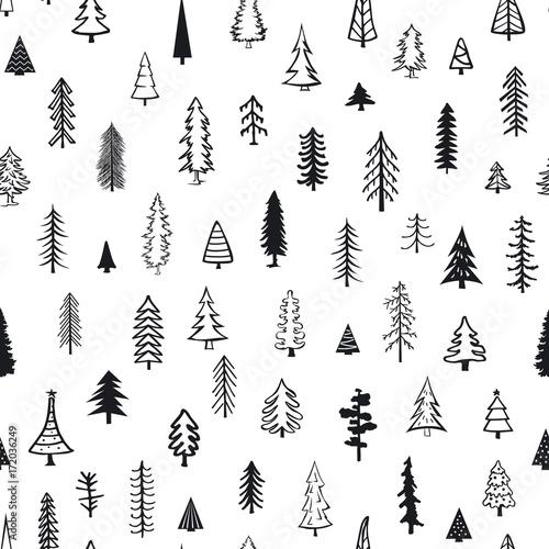 wzor-z-roznych-drzew-iglastych