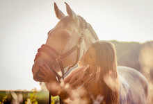 Woman Hugging Her Horse At Sun...