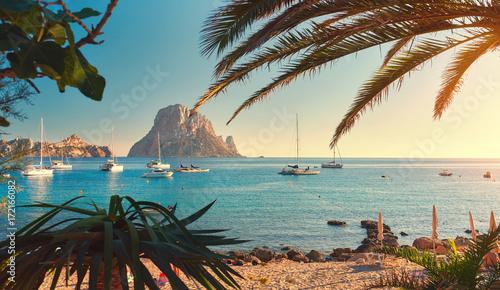 Poster Palmier Cala d'Hort beach. Ibiza Island. Spain