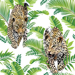 Naklejka Na szybę Leopards palm leaves tropical watercolor in the jungle seamless background