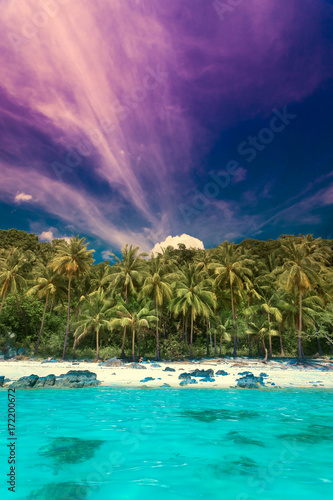Foto op Aluminium Snoeien Panorama of tropical island with atoll in Indian Ocean. Uninhabited and wild subtropical isle with palm trees. Blue clear ocean water, perfect diving. Travel background. Holiday and Vacation concept
