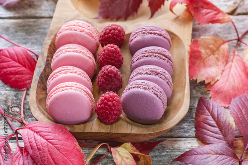 pink-and-white-macaroni-with-raspberries
