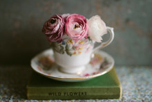 Pretty Pink Ranunculus In A Vintage China Cup