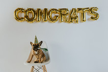 Gold Congrats Balloon Letters ...